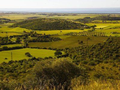 La corsa wine - il territorio